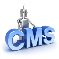 Website Content Management