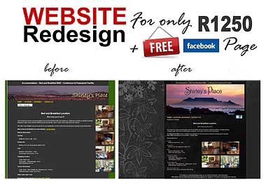 Website Redesign Promo